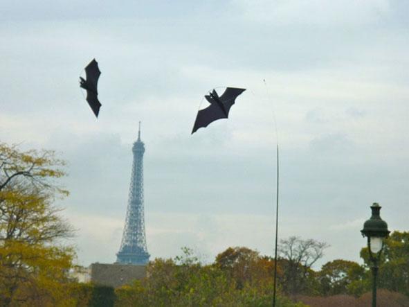 cvlouvre-tuileries4